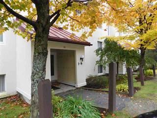 Condo for sale in 161 Mountainside Drive Unit 4, Sugarbush Village, VT, 05674