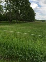 Land for sale in 6100 COOK Road, Mundy, MI, 48473