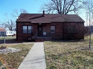 Single Family for sale in 112 Welver Street, Ridgway, IL, 62979