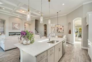 Single Family for sale in 371 GLENNEYRE CIR, St. Augustine, FL, 32092