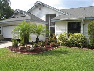 Single Family for sale in 4812 HARBOR WOODS DRIVE, Palm Harbor, FL, 34683