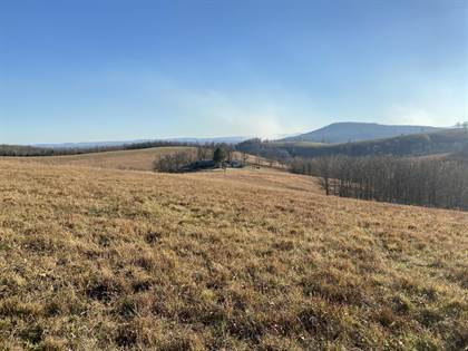 Farm And Agriculture for sale in 3069 Seedling Road, St. Joe, AR, 72675