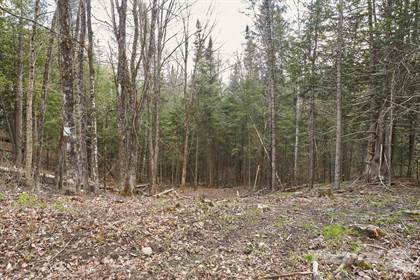 Residential Property for sale in Ch Gros Rocher, Harrington, Quebec