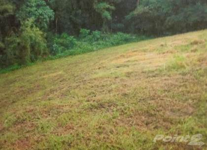 Lots And Land for sale in Barrio Carrizales, Hatillo, PR, 00659