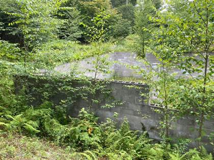 Lots And Land for sale in 134 Bush Mountain Dr, Tobyhanna, PA, 18466