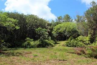 Land for sale in 17-4579 NORTH RD Lot : 7, Greater Hilo, HI, 96771
