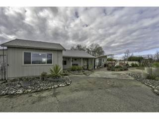 Single Family for sale in 3100 Wescott RD, Greater Grimes, CA, 95932