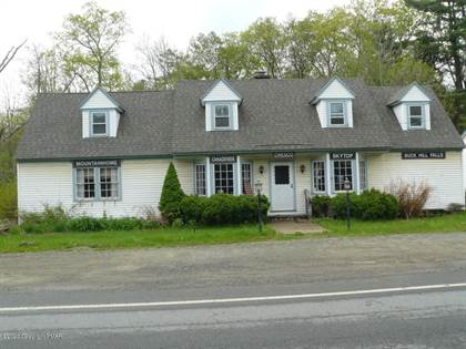 Multifamily for sale in 1121 Route 390 RTE, Mountainhome, PA, 18342