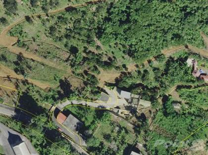 Residential Property for sale in Bo. La Pica Car. 143 km. 9, Jayuya, PR, 00664