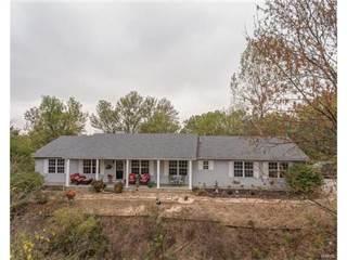 Single Family for sale in 9400 Schaller Road, Lenzburg, IL, 62255