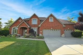 Single Family for sale in 21882 Blue Bird Lane, Frankfort, IL, 60423