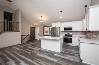 Single Family for sale in 1223 Newton Avenue N, Minneapolis, MN, 55411