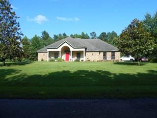 Single Family for sale in 2545 Scott Murray Rd SE, Meadville, MS, 39653