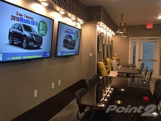 Apartment for rent in Alta at Magnolia Park - 1BR-G, Progress Village, FL, 33578