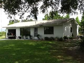 Residential Property for sale in 1194 MAUDE ROAD, Lemon Grove, FL, 33873