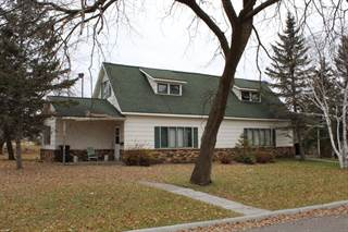 Multi-family Home for sale in 419 Washington Avenue S, Park Rapids, MN, 56470
