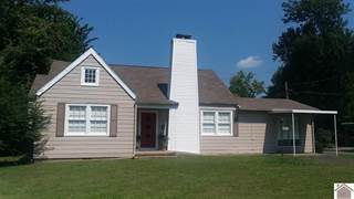 Single Family for sale in 327 Backusburg, Mayfield, KY, 42066
