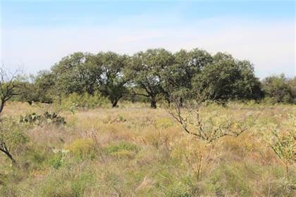 Lots And Land for sale in Na CR 132, Moran, TX, 76464
