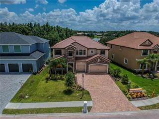 Single Family for sale in 10741 CORY LAKE DRIVE, Tampa, FL, 33647