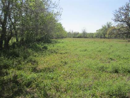 Lots And Land for sale in 4261 CR 506, Brazoria, TX, 77422