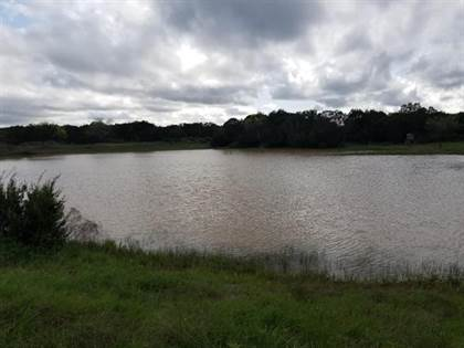 Lots And Land for sale in 9999 CR 108, Santa Anna, TX, 76878