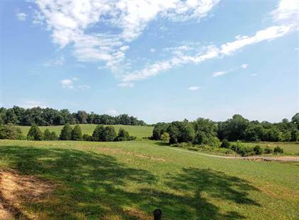 Farm And Agriculture for sale in MT ZION CHURCH RD, Madison, VA, 22727