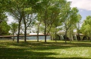 Land for sale in Land for sale Queretaro, 205 hectares, San Juan del Rio, Queretaro
