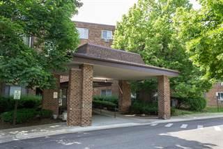 Condo for sale in 1475 Rebecca Drive 316, Hoffman Estates, IL, 60169