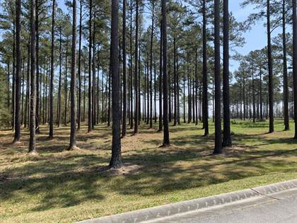 Lots And Land for sale in 68 Cassie May Boulevard, Arapahoe, NC, 28510