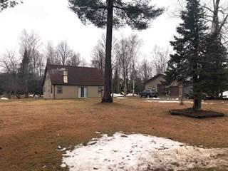 Single Family for sale in 105 Hagerman Lake, Iron River, MI, 49935