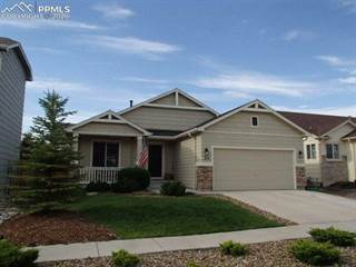 Single Family for rent in 7440 Flathead Lake Drive, Colorado Springs, CO, 80923
