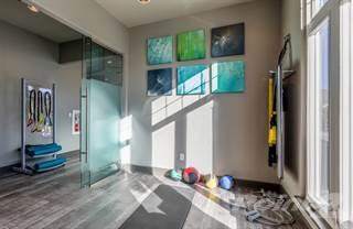 Apartment for rent in Avant at Castle Pines - C1DG2, Castle Rock, CO, 80108
