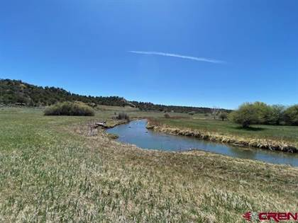 Lots And Land for sale in 755 Bareback Lane, Durango, CO, 81303