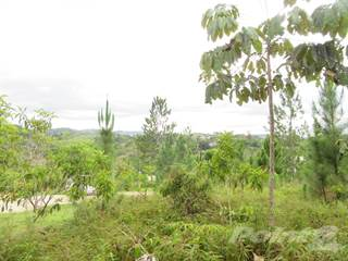 Land for sale in carretera 173 km. 8.7 interior, Aguas Buenas, PR, 00703