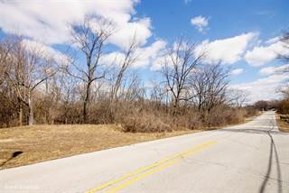 Land for sale in 15650 113th Avenue, Orland Park, IL, 60467