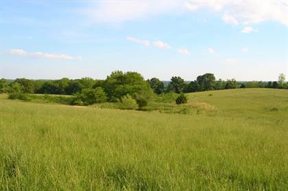 Farm And Agriculture for sale in 732 Muskego Road, Nixa, MO, 65714