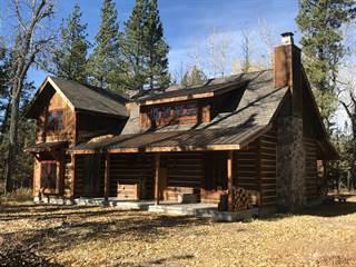 Single Family for sale in 2846 Blackburn Drive, Lincoln, MT, 59639