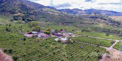 Lots And Land for sale in Aster Coffee Farm in Cachí, Paraiso, Cartago