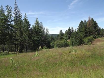 Lots And Land for sale in 120 TRAILBLAZER CT, Pinehurst, ID, 83850