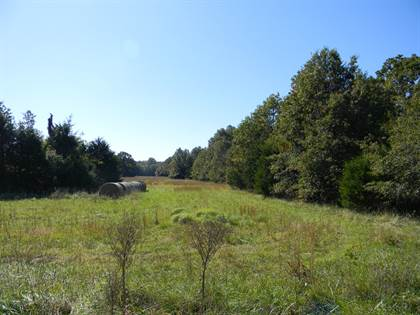 Lots And Land for sale in Lot 3 East Farm Rd 94, Strafford, MO, 65757