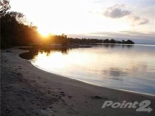 Land for sale in 12 Christidis Dr, Georgina, Ontario, L0E1L0