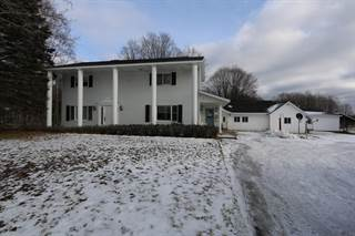 Single Family for sale in 9920 S North Hulbert RD, Hulbert, MI, 49748