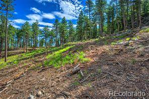 Lots And Land for sale in 0-TBD Cnty Rd 314, Idaho Springs, CO, 80452