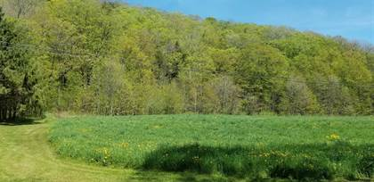 Lots And Land for sale in BLY HOLLOW RD, Berlin, NY, 12022