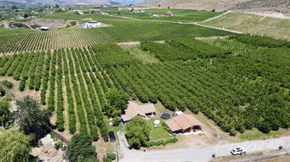Farm And Agriculture for sale in 212 Greasewood ave, Oliver, British Columbia, V0H1T1