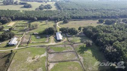 Farm And Agriculture for sale in 1100 SW 110th Avenue, Ocala, FL, 34481