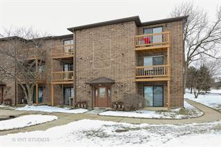 Condo for sale in 2258 Abbeywood Drive D, Lisle, IL, 60532