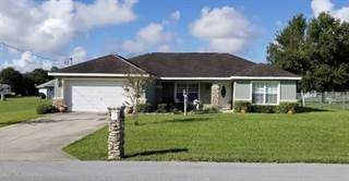Single Family for sale in 212 locust Pass Course, Ocala, FL, 34472