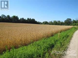 Farm And Agriculture for sale in 36829 DUNGANNON RD, Ashfield - Colborne - Wawanosh, Ontario