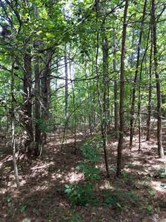 Lots And Land for sale in 280 Hudgins Rd, Ellenboro, NC, 28040